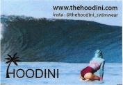 Hoodini Image - small